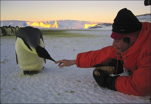 [Jérôme Maison/Bonne Pioche Productions/Alliance de Production Cinématographique]