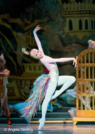 "PNB dancer Elizabeth Murphy as the Peacock in <i>Nutcracker</i>.<br> <a href=""http://www.pnb.org/Season/13-14/Nutcracker/#Media"">http://www.pnb.org/Season/13-14/Nutcracker/#Media</a>"