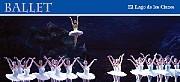 Martes 17 (AN), miércoles 18, jueves 19, viernes 20, sábado 21, domingo 22 (AV), jueves 26, viernes 27 y sábado 28 de diciembre 2013  Coregrafía: Peter Wright Música: Piotr Ilich Chaikovski Primeras figuras y solistas del Ballet Estable Orquesta Filarmónica de Buenos Aires Director: Hadrián Avila Arzuza Teatro Colón http://www.teatrocolon.org.ar/es/