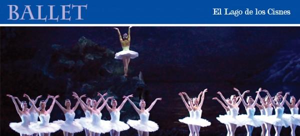 """Martes 17 (AN), miércoles 18, jueves 19, viernes 20, sábado 21, domingo 22 (AV), jueves 26, viernes 27 y sábado 28 de diciembre 2013<br><br>Coregrafía: Peter Wright<br>Música: Piotr Ilich Chaikovski<br>Primeras figuras y solistas del Ballet Estable<br>Orquesta Filarmónica de Buenos Aires<br>Director: Hadrián Avila Arzuza<br>Teatro Colón<br><a href=""""http://www.teatrocolon.org.ar/es/"""">http://www.teatrocolon.org.ar/es/</a>"""