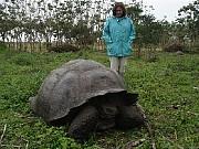 Hilda Reynoso y amigable tortuga se prestan para la foto de Ariel