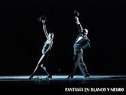 Fantasía en Blanco y Negro, Romance entre Brumas; en el Teatro ND Ateneo, Buenos Aires, 03 diciembre 2009.Ginete Stabio, Hugo Ucha.[Foto Antonio E. Fresco]