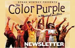 The Color PurpleNewsletter